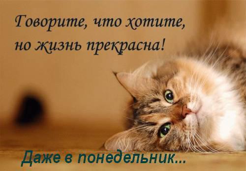 http://content.foto.my.mail.ru/mail/skoros.t.b/_blogs/i-59411.jpg
