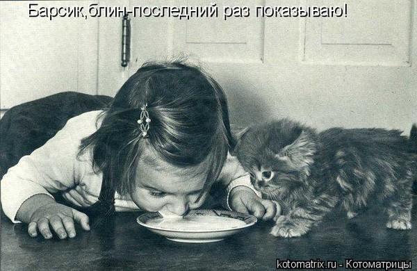 Re животные и детёныши