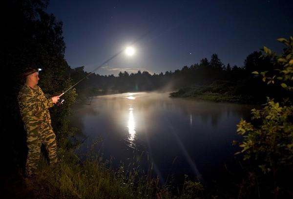 осень лето ночная рыбалка