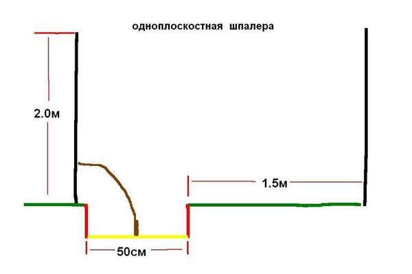 размер для схемы посадки