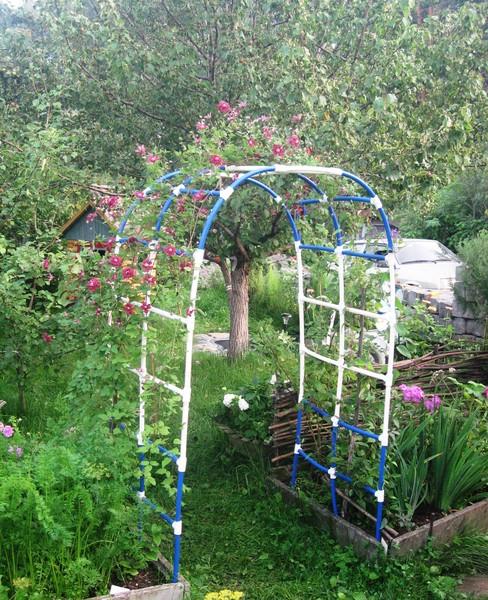 Садовые арки из пластиковых труб фото