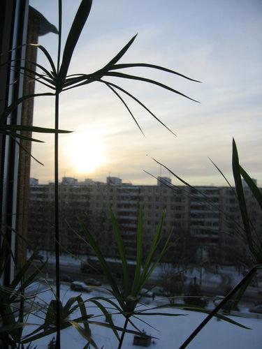 http://foto.mail.ru/bk/blymberg/66/i-116.jpg