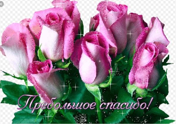 Цветы маме гифы