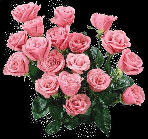 живые картинки роз на день рождения комфортно, уютно