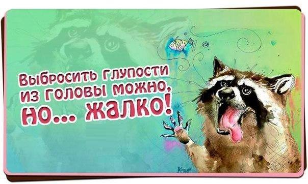 https://content.foto.my.mail.ru/community/funny_cards/_groupsphoto/h-14580.jpg