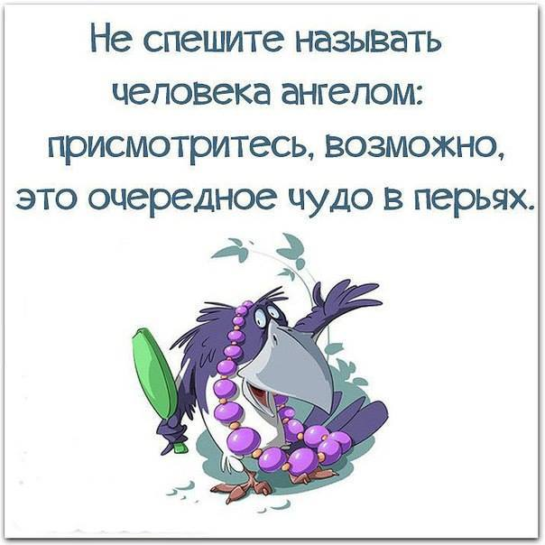 https://content.foto.my.mail.ru/community/funny_cards/_groupsphoto/h-15384.jpg
