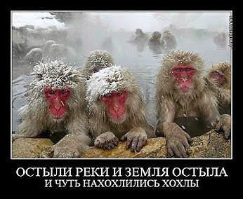 http://content.foto.my.mail.ru/community/netnarkomanov/_groupsphoto/i-16074.jpg