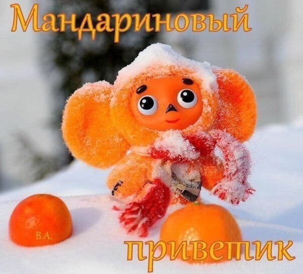 https://content.foto.my.mail.ru/community/society2/_groupsphoto/i-44948.jpg
