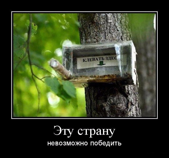 https://content.foto.my.mail.ru/community/this_is_russia/_groupsphoto/h-125649.jpg
