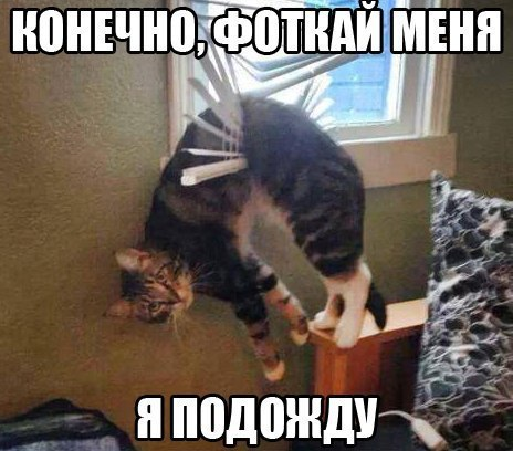 https://content.foto.my.mail.ru/community/to_many_things_to_laught_/_groupsphoto/h-1636.jpg