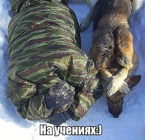 https://content.foto.my.mail.ru/community/to_many_things_to_laught_/_groupsphoto/h-1766.jpg