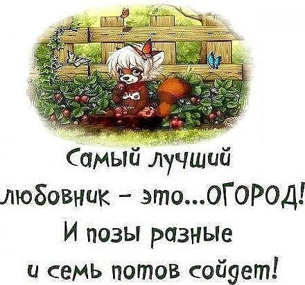https://content.foto.my.mail.ru/community/www.smex.www/_groupsphoto/h-24750.jpg