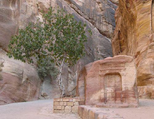 Иордания/ Египет ( 2007)