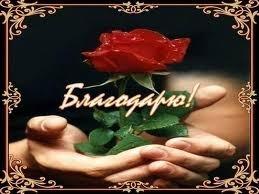 https://content.foto.my.mail.ru/inbox/sib10/_blogs/i-989.jpg