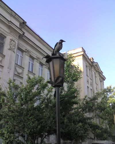 http://foto.mail.ru/list/2land2/36/i-139.jpg