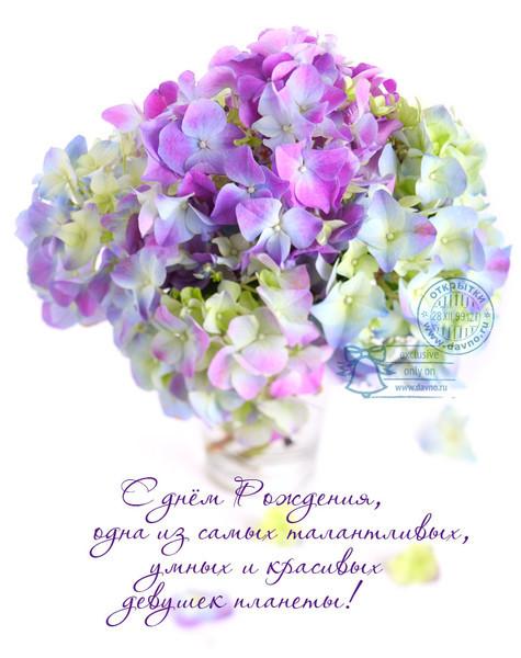 Поздравления с днем рождения открытки цветы