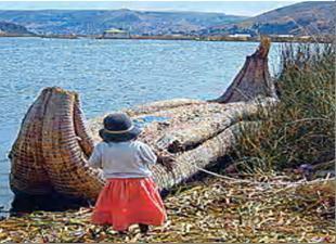 Такие суда из тростника тотору с озера Титикака бороздили океаны.