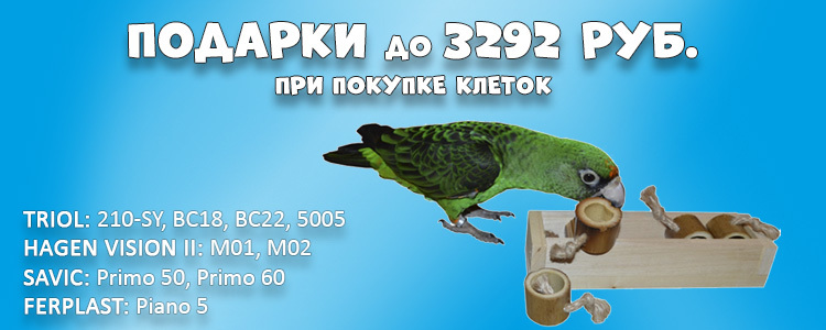https://content.foto.my.mail.ru/mail/4parrots/2018/h-494.jpg