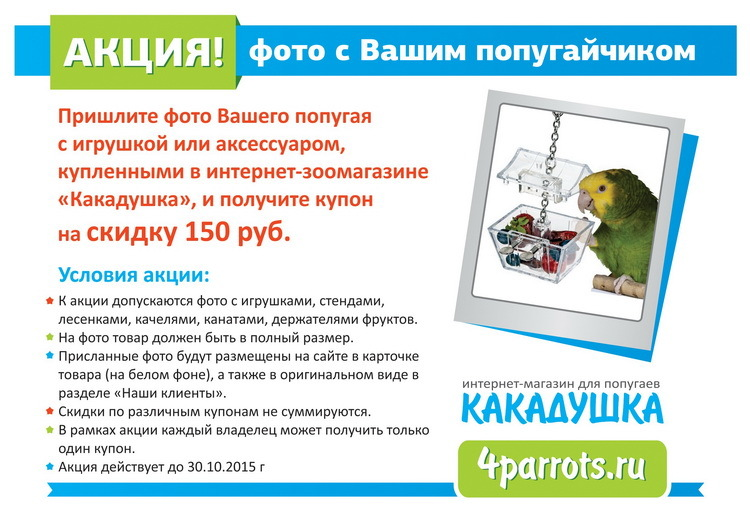 https://content.foto.my.mail.ru/mail/4parrots/430/h-436.jpg