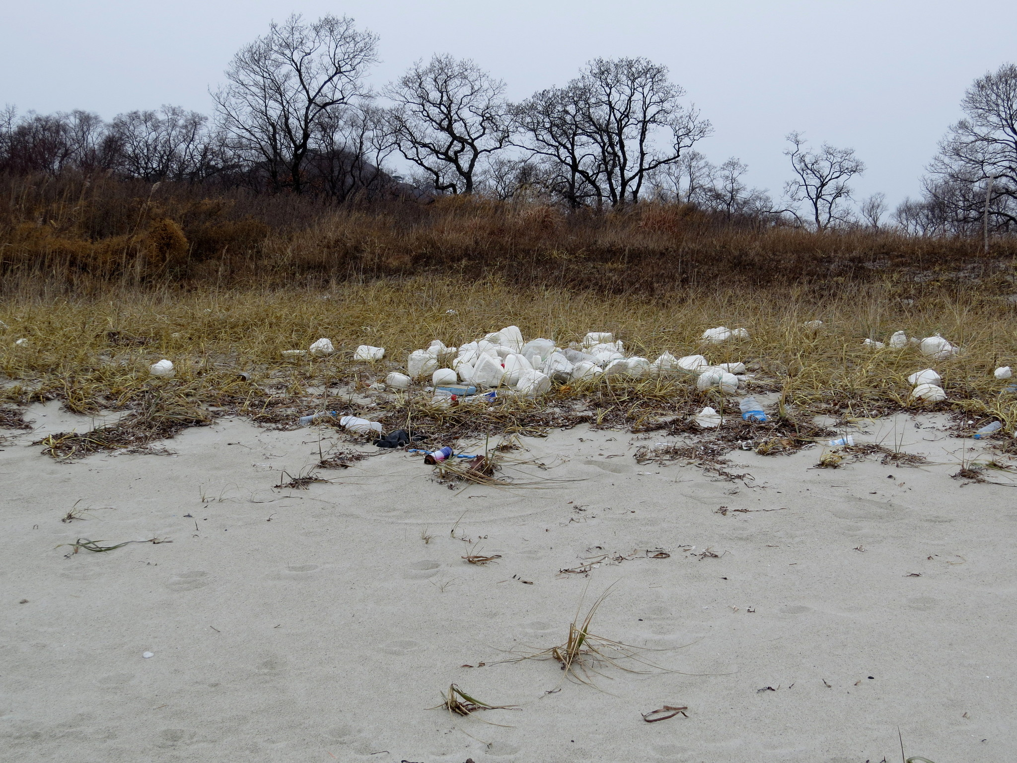 Выбросы пластикового мусора в б. Средняя