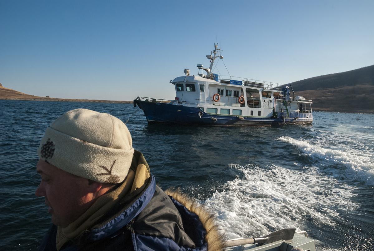 В бухте Молчанского