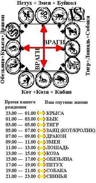 гороскоп лошади и крысы совместимость