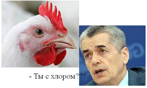 Куриный грипп сменятся куриной войной