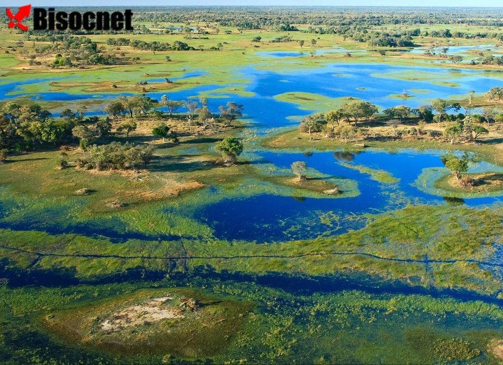 Дельта Окаванго: Ботсвана