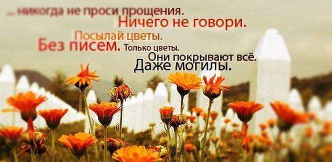 Цитаты в картинках