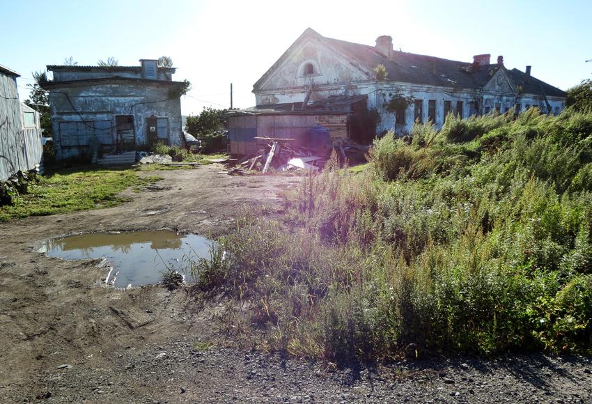 Остров Русский . Часть 1 : Кампус