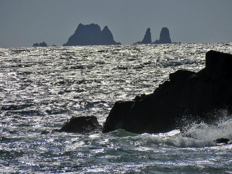 Владивосток. Часть 17: остров Попова (и немного Рейнеке)