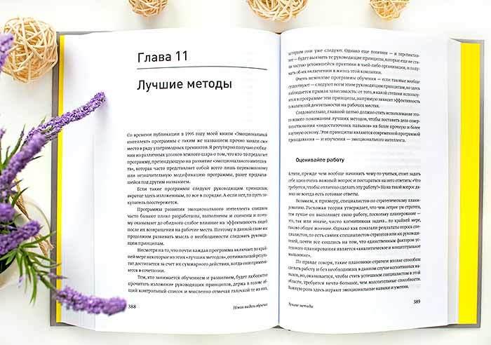 книга Эмоциональный интеллект в работе Дэниел Гоулман отзыв