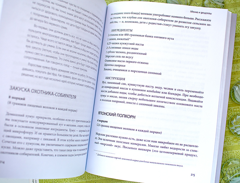 книга отзыв Здоровый кишечник Джастин Эрика Соннебург
