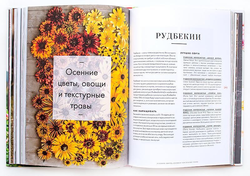 книга Цветочный сад. Год в окружении прекрасных растений Эрин Бензакейн отзыв