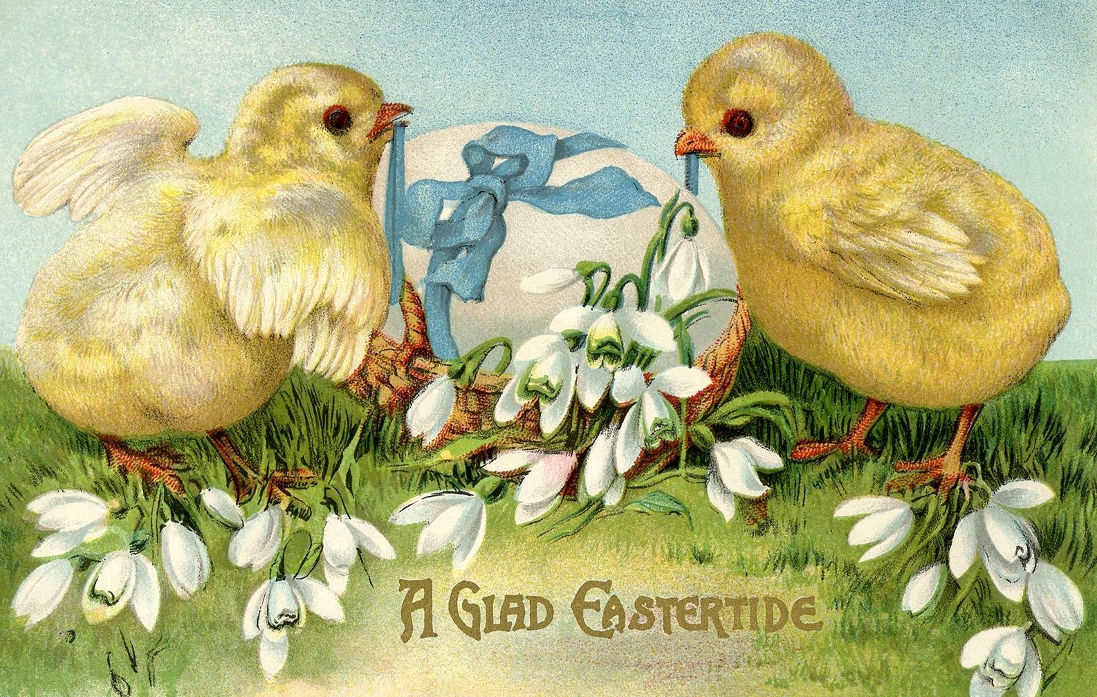 Пасхальные открытки цыплята, открытки поздравления