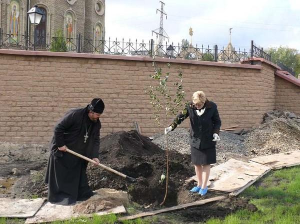 Посадка деревьев в Свято-Георгиевском храме