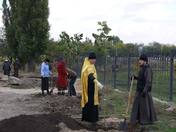 Озеленение Свято-Георгиевского храма