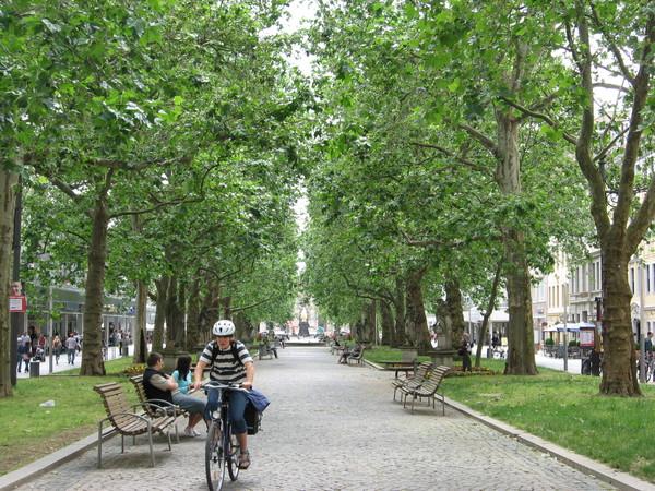 Вообще город на противоположном берегу Эльбы очень мил и по-хорошему провинциален