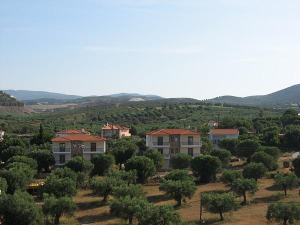 Из окна открывался вид на типичный пейзаж: горы, оливковые рощи, красные черепичные крыши...<br>В принципе все Халкидики такие и есть...