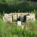 11 и 14 июня 2007 г. Греция. Древний Олинф и Дион