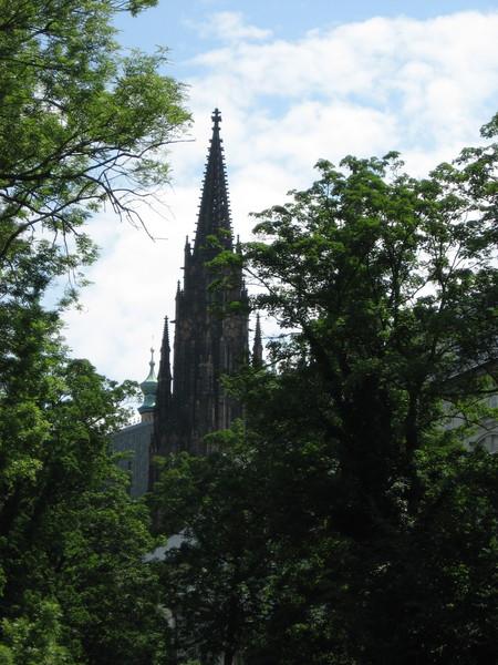 Вид на Собор Св. Вита из парка «Олений ров»