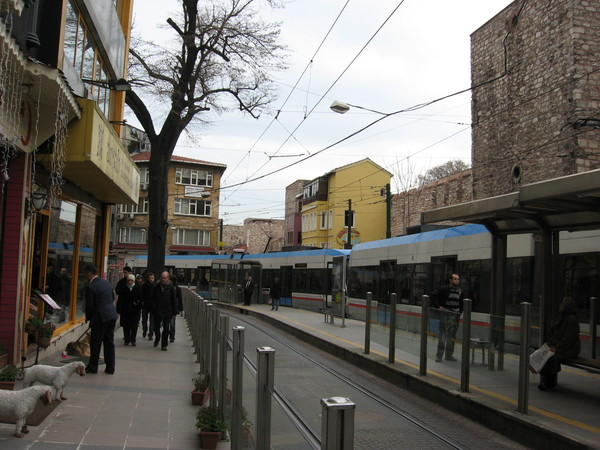 """Остановка трамвая \""""Гюльханэ\"""".<br>Овечки слева караулят вход в правильный паб \""""The North Shield\"""" (рекомендуемый путеводами Sultan Pub - редкостный отстой)"""