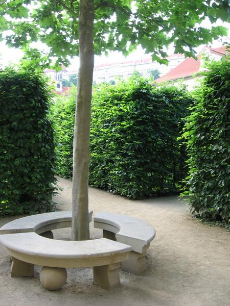 Дворец очень красив, но еще более хорош его парк...