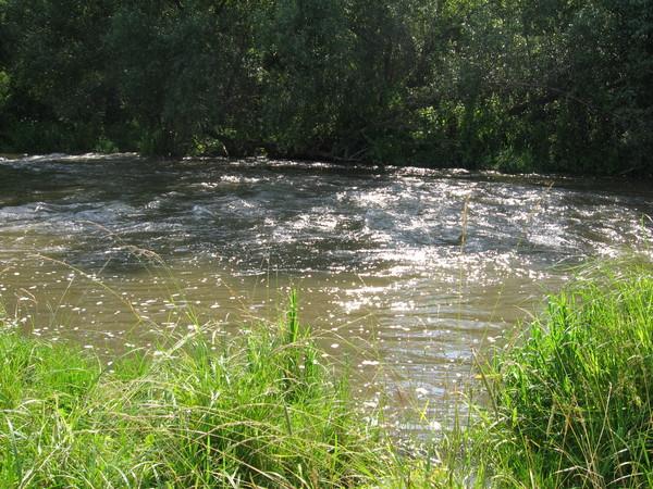 В тот же день был совершен автопробег в деревню Большие Белынычи в поисках <a href=http://autotravel.ru/otklik.php?ex=4437>водопадов на Гремухе</a><br>Водопады найдены не были. Но места там очень красивые