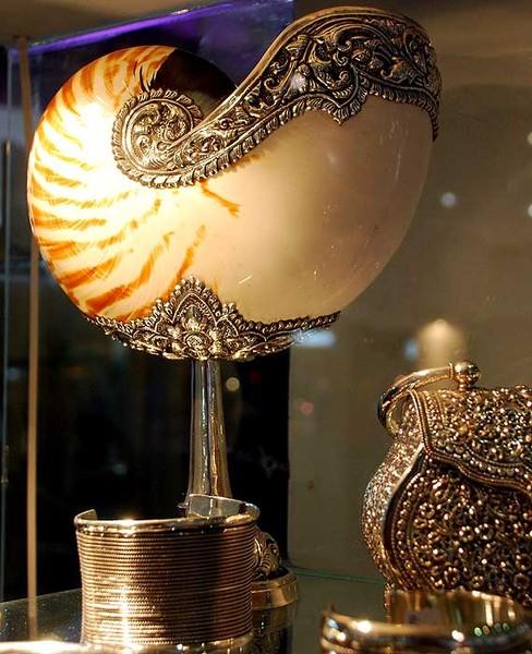 Nautilus - драгоценное украшение , картинка номер 600503.
