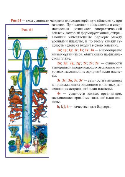 Рис 61 с описанием