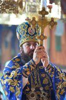 Mesajul de felicitare al PS PETRU, Episcop de Ungheni și Nisporeni, adresat PS MARCHEL, Episcop de Bălți și Fălești, cu ocazia zilei de naștere