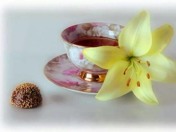 Картинки с добрым утром с лилиями, перевести