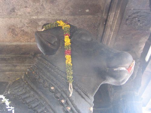 http://foto.mail.ru/mail/hari_om_tat_sat/india-tiruvannamalay/i-1412.jpg