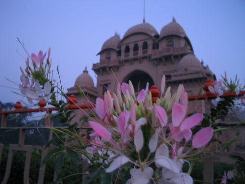 http://foto.mail.ru/mail/hari_om_tat_sat/india_2003/i-202.jpg